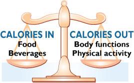 caloriesinandout
